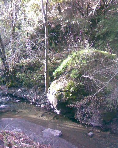 Big Rock in Stevens Creek