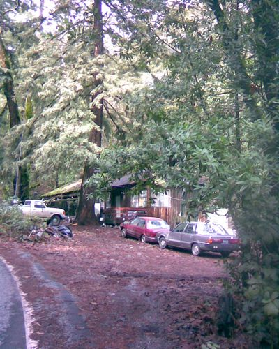 House in the Woods with Junk Cars